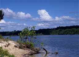 Foto: s.t.o. suriname travel organisation